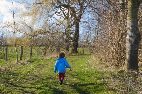 Schlei, Natur, Spaziergang, REisetipp