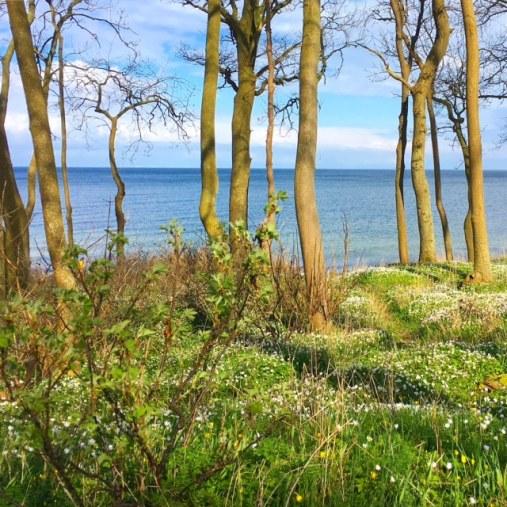 Ein tolles Ausflugsziel auf der Insel Fehmarn ist der Strand von Katharinenhof - nicht nur für FAmilien