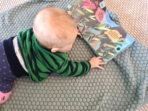 Babybücher und Papp Bilderbücher für Kleinkinder zum Vorlesen